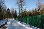 Лесной участок 25 соток в нии Радио - Фото 4