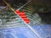Участок 2,22га д. Кресты, первая линия Ленинградского 40км, Сол - Фото 1