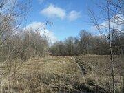 15 соток на берегу реки Ломоносовский район - Фото 4