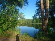 Участок с панорамный видом, расположенный на берегу большого озера - Фото 5