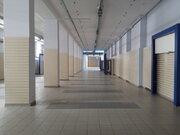 Аренда универсального (торгового) помещения,1347м2. - Фото 4