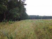 Продам 46,4 га в д. Покров, Жуковский район, 90 км от МКАД - Фото 1