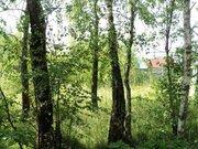 Участок земли 6 Га, город Таруса, Калужская область - Фото 4