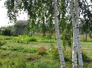 Продается земельный участок в СНТ Полесье д. Липитино Озерский район - Фото 2