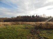Продается большой участок земли в д.Булыгино Рузский р. - Фото 2