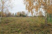Продаю земельный участок 14.38 соток в д. Новое Село - Фото 2