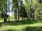 18 соток на берегу Москвы-реки с лесными деревьями - Фото 4