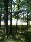 Продается земельный участок в 15 км. от г.Чебоксары - Фото 3