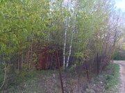 Земельный участок 8 соток, свет, газ, д. Мещерское Чеховский район - Фото 4
