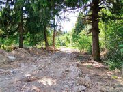 Лесной земельный участок деревня Садки - Фото 3