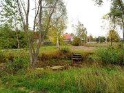 Участок в солнечногорском районе деревня мошницы - Фото 3