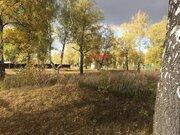 Участок в Перхурово - Фото 2