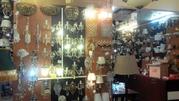 Магазин в ТЦ ( Люстры, светильники, ковры и т.д ) - Фото 3