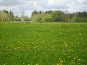 Земельный участок 165 соток с/хоз назначения рядом с деревней - Фото 4
