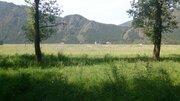 Продам участок у дороги. Село Чемал. Торг. ИЖС - Фото 5