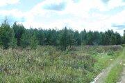 Участок в Киржачском районе с собственным лесом с выходом в лес. - Фото 4