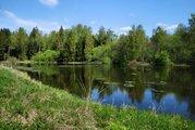 Красивый участок на границе леса у берега озера - Фото 3
