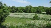 Любителям лесных просторов, грибов, земляники и речки! - Фото 2