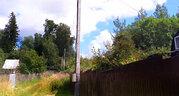 Дачный участок у леса в районе д. Строково Волоколамского района МО - Фото 3