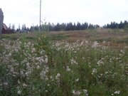 Участок 15 соток на окраине пгт Фряново 57 км по Щелковскому шоссе. - Фото 4