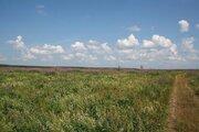 Продаю участок сельхозназначения дешево 4,5 га 98 км по Щелковскому ш - Фото 1