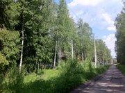 Шикарный участок 15 сот в 2 км от г.Чехов, д.Репниково. - Фото 4