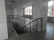 Аренда торгового помещения, Липецк, Заводская пл. - Фото 4