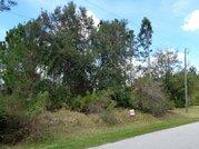 Продается участок в г. Палм Кост, Флорида США - Фото 4