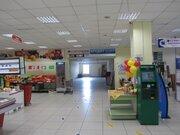 Аренда торгового помещения с Павловск, ул Калинина, 42е - Фото 1