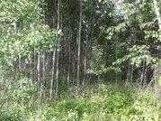 Продается земельный участок г.Домодедово, ул. Сигнал-Немцово - Фото 2