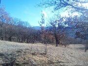 Продается участок 1,22 га в селе Соколиное Бахчисарайского р-на, Крым. - Фото 4