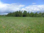 Земельный участок 30 сот (знп;лпх) в п. Буденовец от МКАД 68 км - Фото 1