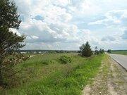 3,5 Га для сельхозпроизводства - 90 км Щёлковское шоссе - д.Лисицыно - Фото 3