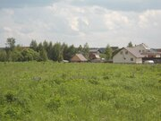 3,5 Га для сельхозпроизводства - 90 км Щёлковское шоссе - д.Лисицыно - Фото 4