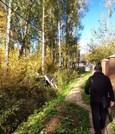 Продаю участок 10 соток, Новая Москва СНТ Ватутинки, д Пучково - Фото 3