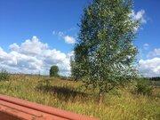 20 соток в деревне Бережки - почти бесплатно - Фото 3