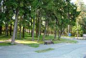 Продаю прилесной участок в кп на берегу Пестовского водохранилища - Фото 4