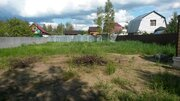 Участок в сосновом лесу. 50 км от Москвы. - Фото 2
