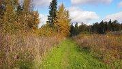 Участок 8-мь соток (ИЖС) д.Агафониха 23 км от МКАД у леса - Фото 1