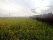 Земельный участок 25 соток д. Беляево Чеховский район - Фото 3