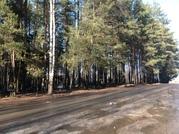 Продажа земельного участка территория бывшего Пансионата в д.Михали - Фото 1