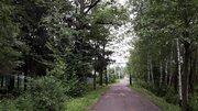 Киевское ш 40 км от МКАД, участок 6 сот.Нов.Москва, Бекасово, ст Ждановец - Фото 1