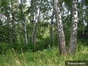 Земельные участки в Васильсурске