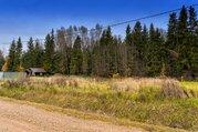 Прилесной участок в коттеджном поселке Залесье - Фото 1