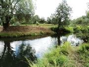Участок 20 сот. д. Андреевское, река Протва, 110 км от МКАД, МО. - Фото 1
