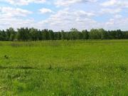 Земельный участок с лесом Александровский р-н
