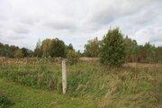 Продажа земельного участка 32 сот. в д. Токарево - Фото 3