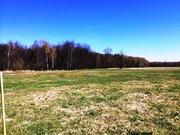 Продам участок 6,93 соток в уютном дачном поселке - Фото 5