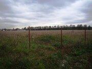 4,2 Га под сельхоз.назначение в д.Курбатово - 95 км Щёлковское шоссе - Фото 4