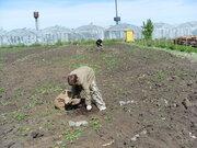 Земельный участок в п. Черницк - Фото 3